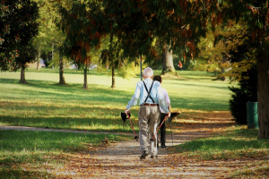 walking-in-the-park