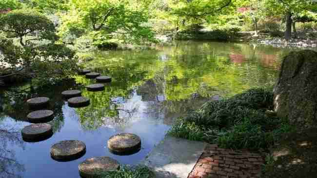 Fort Worth botanical garden pond with stepping stones and trees