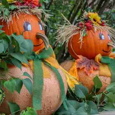 5 Halloween Activities For Seniors and Their Family